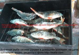Мороженая рыба в коптильне