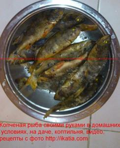 Копченая рыба своими руками в домашних условиях
