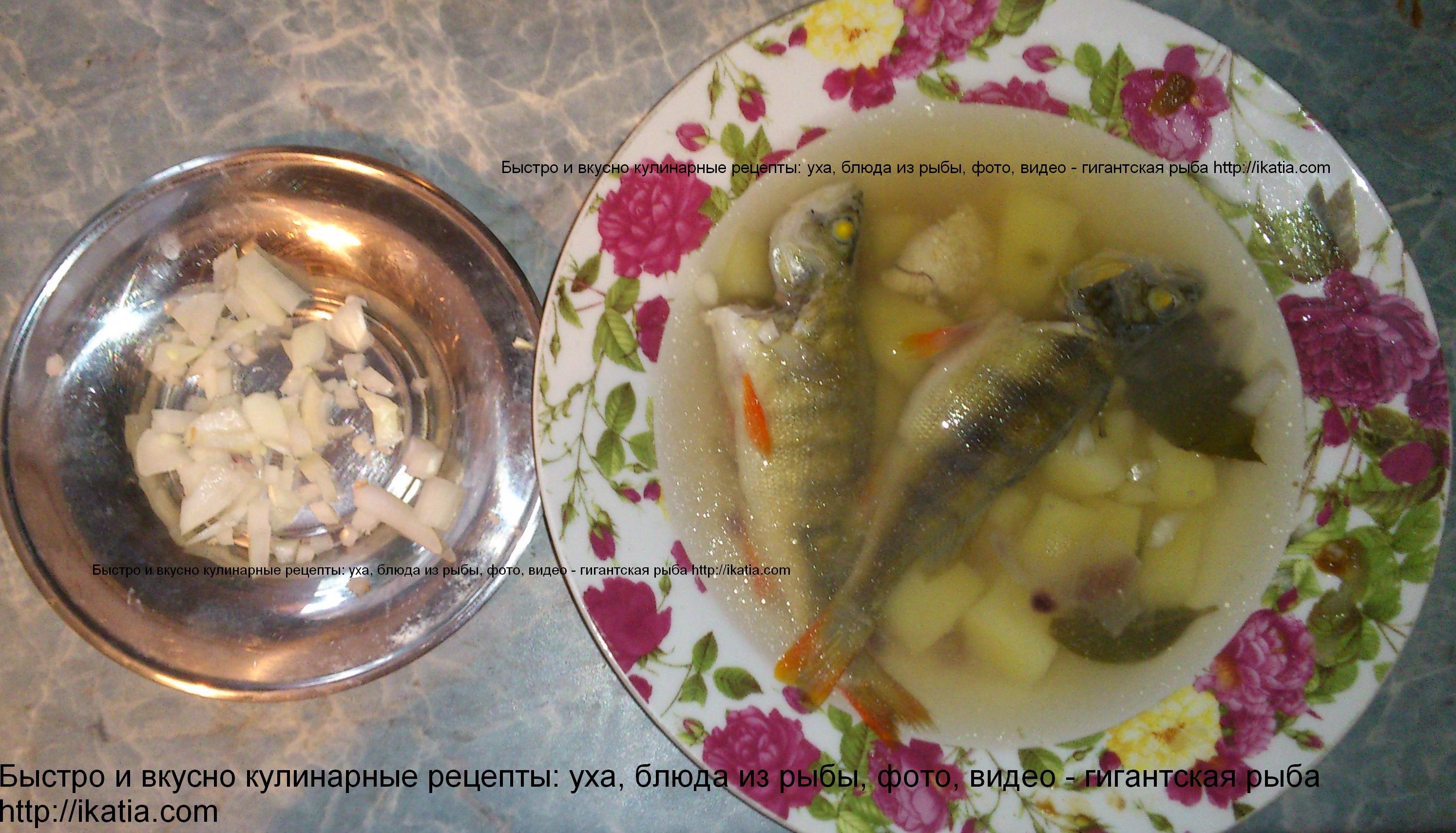 Пошаговый рецепт приготовления борща с говядиной